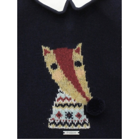 Boy jumper with fox print and shorts
